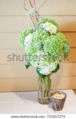 Green Hydrangeas Tall Glass Vase On Stock Photo Edit Now 721857274