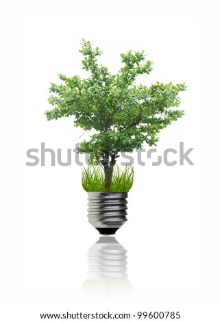 Green idea by a tree in the light bulb. - stock photo