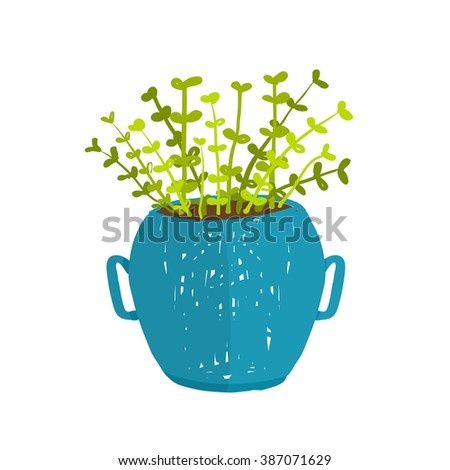 Green indoor leafy plant in pot. Leaf and house gardening, flowerpot and flora isolated object, houseplant design. Raster variant.