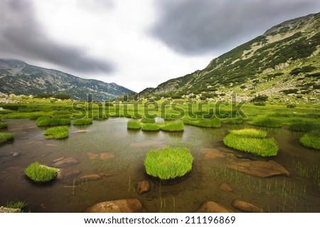 green island  - stock photo