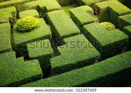 Green labryinth maze garden - stock photo