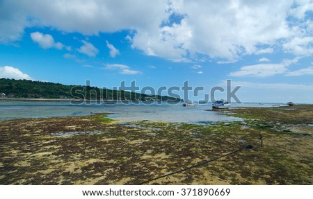 Green lagoon with boats and junks on Indonesian island Bali in sunny summer day