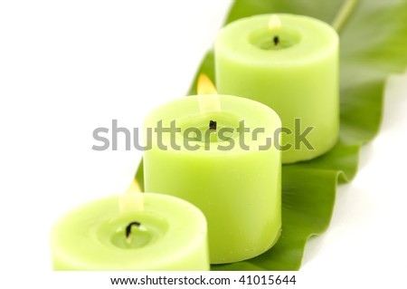 green lamina and green candles
