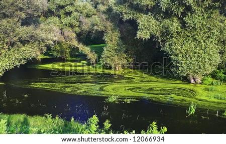 Green landscape - stock photo