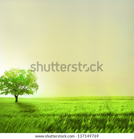 Green landscape - stock photo