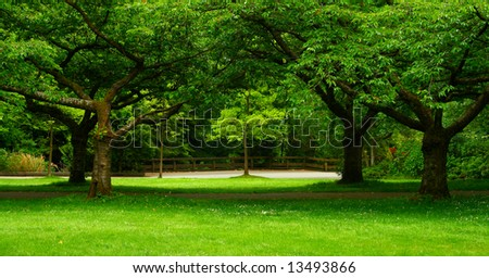 green landscape formed by beautiful trees - stock photo