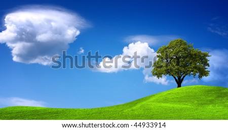 Green landscape panorama - stock photo