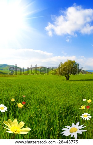 Green landscape with colored flower - stock photo