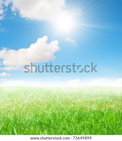 Green landscape with fresh grass