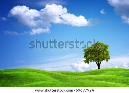 Green landscape with oak tree - stock photo