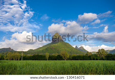 Green landscape with the highest mountain on Mauritius island, I - stock photo