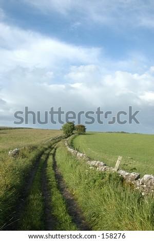 Green Lane - stock photo