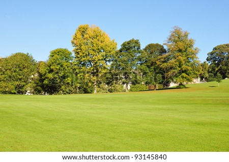Green Lawn and Trees in a Peaceful Park - stock photo