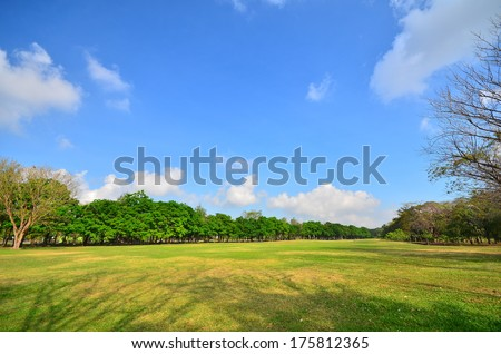 Green Lawn in Public Park - stock photo