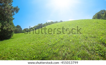 Green lawn on hill with blue sky in park  beautiful morning light in public park with green grass field and green fresh tree plant perspective to copy space for multipurpose - stock photo
