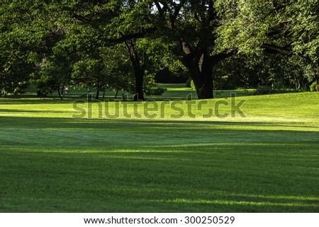Green lawn with trees providing shade.