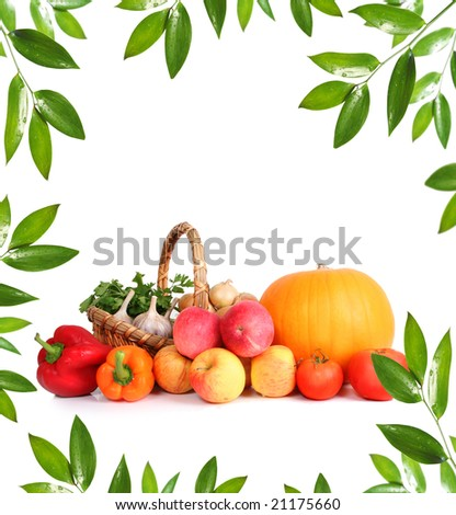 green leaf and healthy vegetables - stock photo