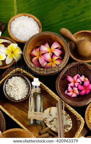 green leaf and spa setting - stock photo