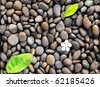 green leaf and white flower droplet on the stone, interior for spa place - stock photo