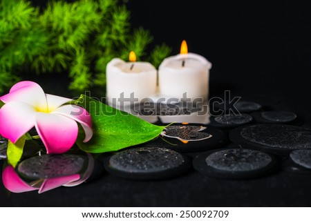 green leaf calla lily, plumeria with drops and candles on zen stones in reflection water, beautiful spa concept - stock photo