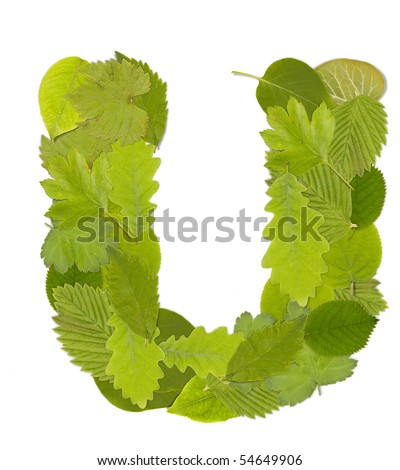 Green leaf  font in white. Letter U - stock photo