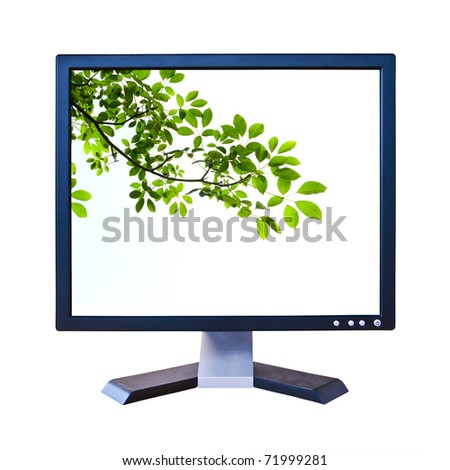 green leaf in lcd monitor isolated - stock photo