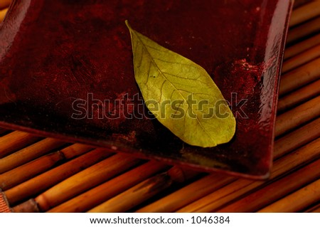 Green Leaf on Bamboo - stock photo