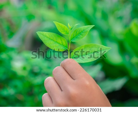 Green leaf on hand, safe the world concept