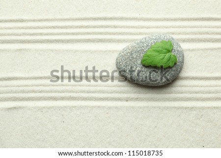 Green leaf on rock in sand - stock photo