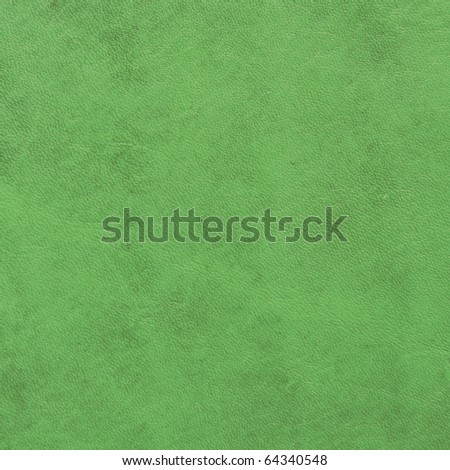 green leather sample - stock photo