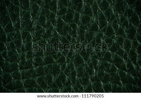 Green leather texture closeup detailed background. - stock photo