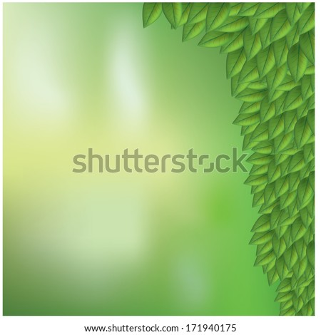 green leaves eco background