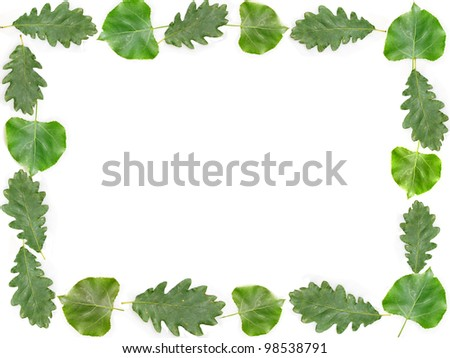 Green leaves frame in white color