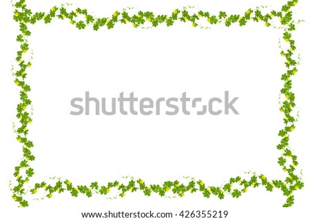 Green leaves frame isolated on white background ,copy space for text - stock photo