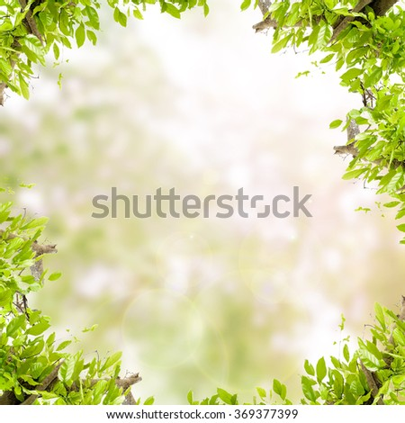 Green leaves frame  on green nature background - stock photo