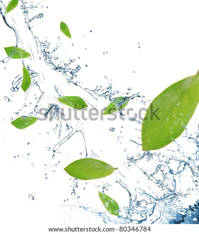 Green leaves in motion - stock photo