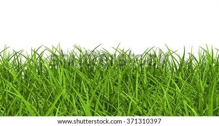 1000+ Beautiful Grass Background Photos Pexels · Free ...