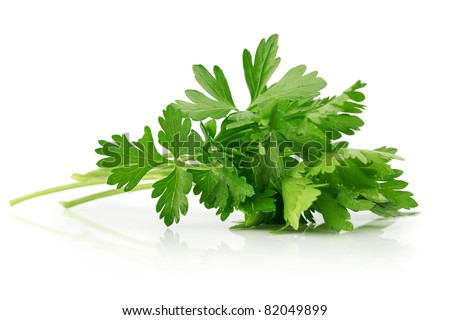 green leaves of parsley isolated on white background - stock photo