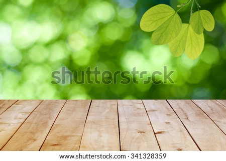 Green leaves on the natural green background. - stock photo