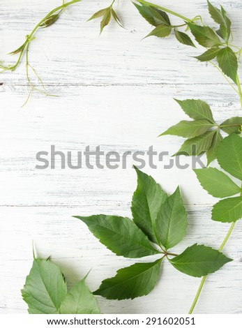 Green leaves on wooden background.