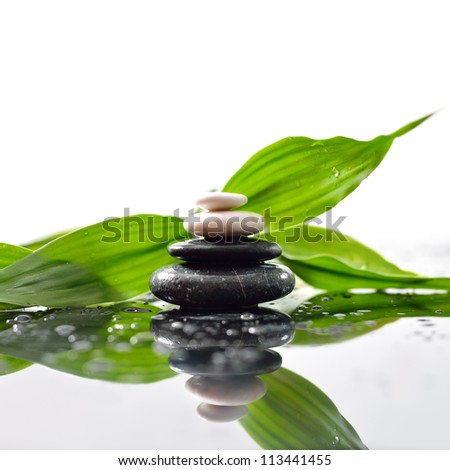 Green leaves over zen stones pyramid on water drops surface - stock photo