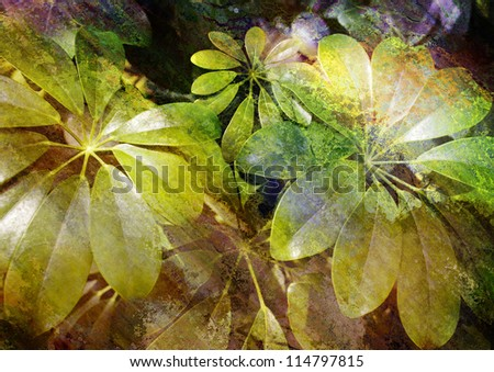 green leaves - stylized floral picture with patina texture - stock photo