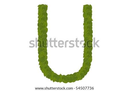 green leaves U - stock photo