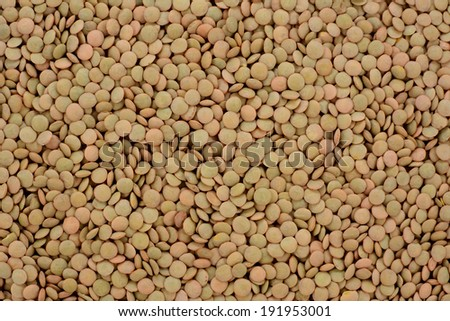 Green lentils, abstract background texture - stock photo