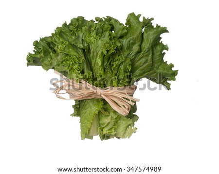 Green lettuce bouquet with string isolated on white background