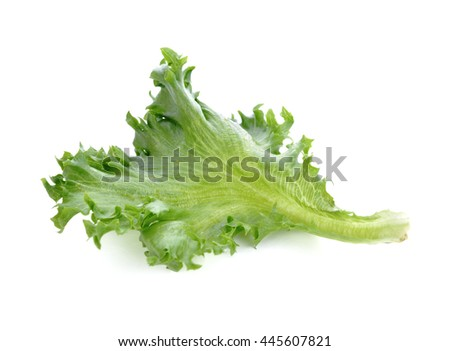 Green lettuce leaf isolated on white