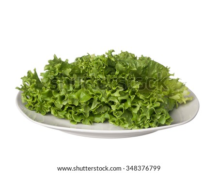 Green lettuce on white plate isolated on white background