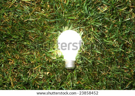 Green Light Bulb glowing in the grass - stock photo