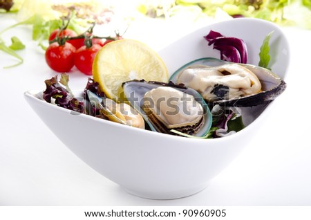 green lipped mussels with salad - stock photo