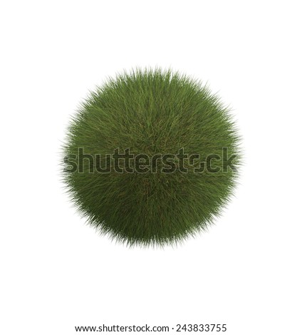 Green long grass ball. Isolated on white. - stock photo